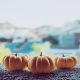 A Grateful Thanksgiving: Inspiration, Blessings, and Opportunities
